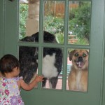 Most of Elise's waking hours were spent at this door talking to the dogs.