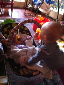 These toys look fun while Audrey suffers through Maggie attack.