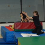 Forward dive roll - vault